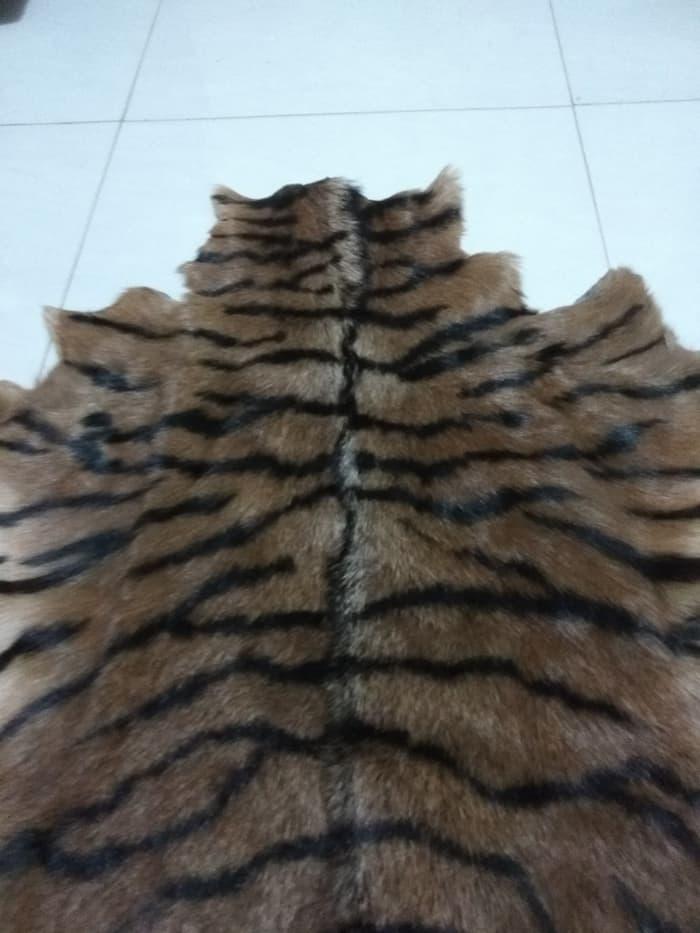 kulit harimau asli